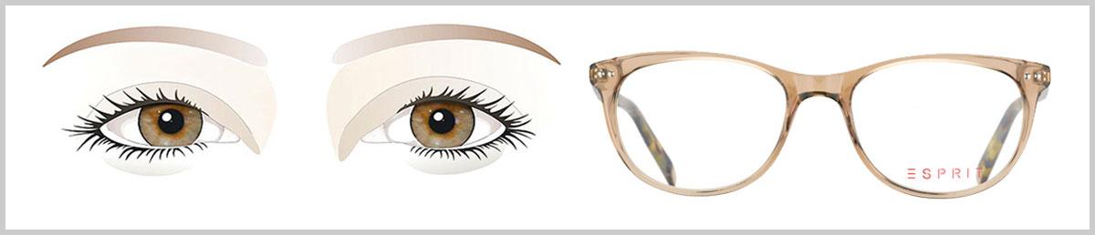 Schmales Gesicht Passende Brille Finden Brillenstyling