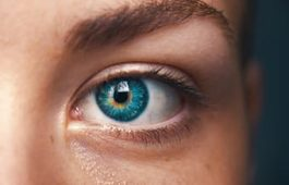 Kontaktlinsenforum – Kontaktlinsen Informationen